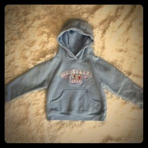 Authentic Disney Hooded Embroidered Pullov…